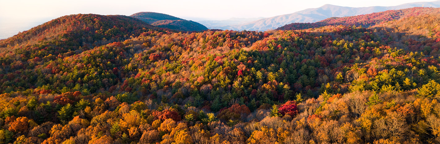 Colorful hills of fall